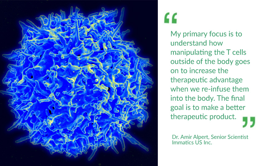 Immunotherapy: Optimizing TCR-T Cancer Therapies
